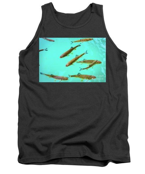 Fish School In Turquoise Lake - Plitvice Lakes National Park, Croatia Tank Top