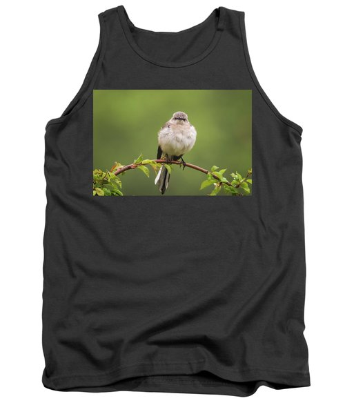 Fluffy Mockingbird Tank Top by Terry DeLuco