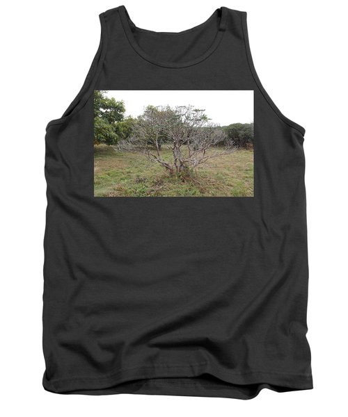 Forest Character Tree Tank Top