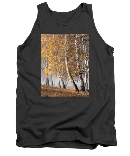 Forest With Birches In The Autumn Tank Top by Odon Czintos