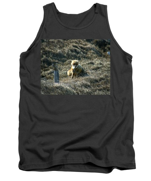 Fox In The Wind Tank Top by Anthony Jones