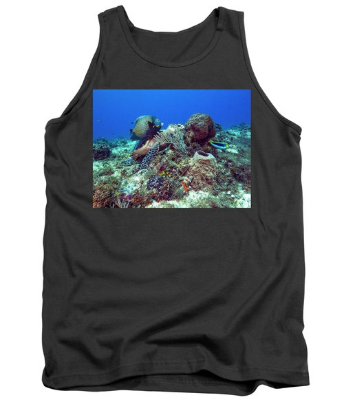 French Angelfish And The Green Turtle Tank Top