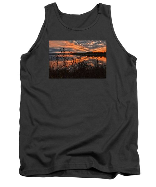 Tank Top featuring the photograph Gainesville Sunset 2386w by Ricardo J Ruiz de Porras