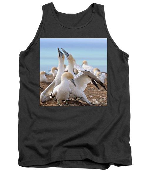 Gannets Tank Top
