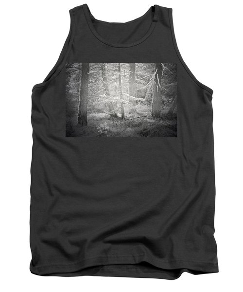 Tank Top featuring the photograph Ghosts Of The Forest 3 by Tara Turner