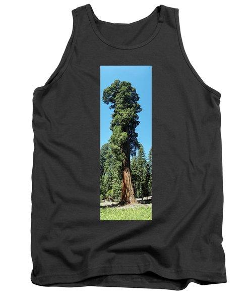 Giant Sequoia, Sequoia Np, Ca Tank Top