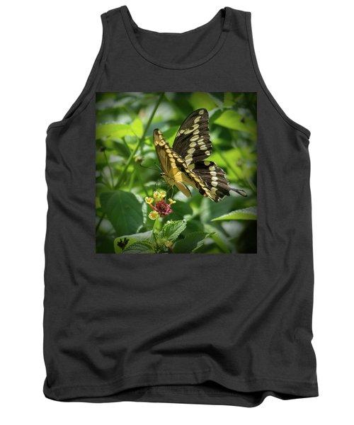 Giant Swallowtail On Lantana Tank Top