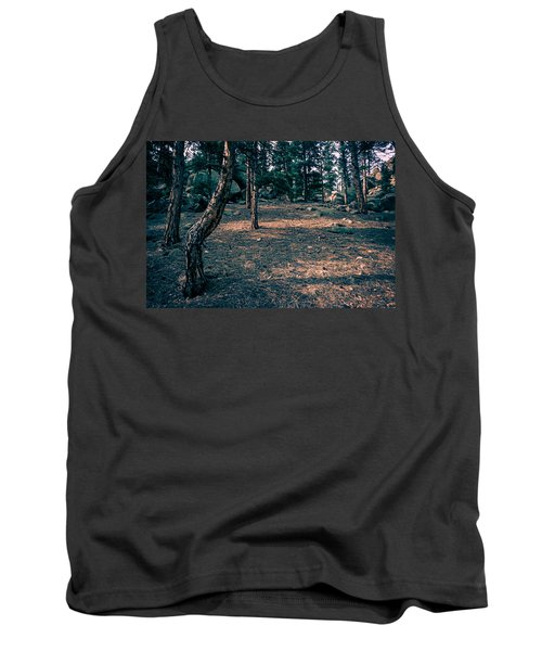 Glade In The Forest Of Colorado Tank Top