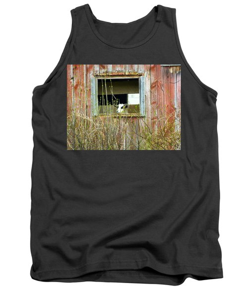 Goat In The Window Tank Top by Donald C Morgan