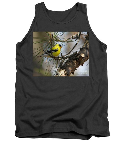 Gold Finch Tank Top