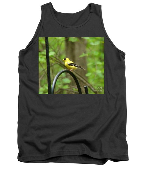 Golden Finch Tank Top