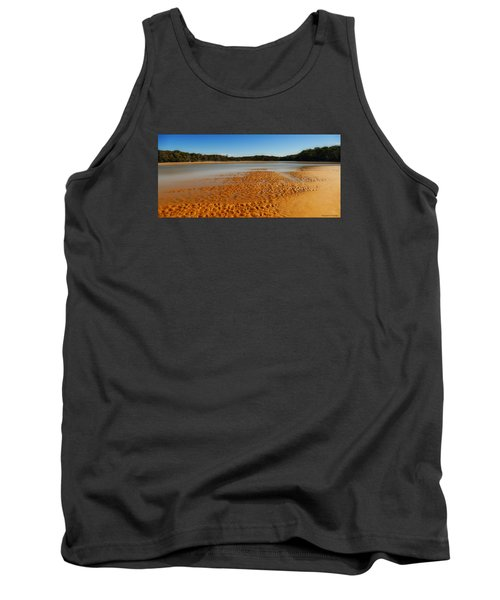 Tank Top featuring the photograph Golden Sand 01 by Kevin Chippindall
