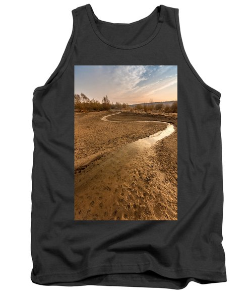 Tank Top featuring the photograph Golden Stream by Davorin Mance