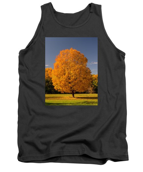 Golden Tree Of Autumn Tank Top by Gary Slawsky