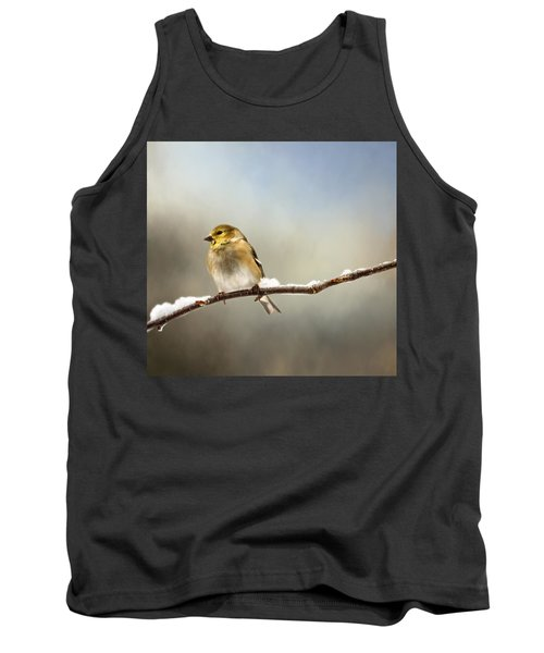 Goldfinch After A Spring Snow Storm Tank Top