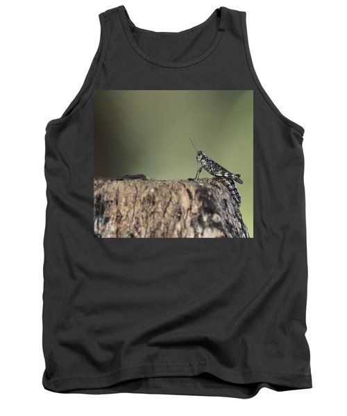 Grasshopper Great River New York Tank Top