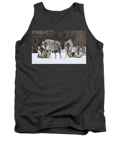 Gray Wolves Norway Tank Top