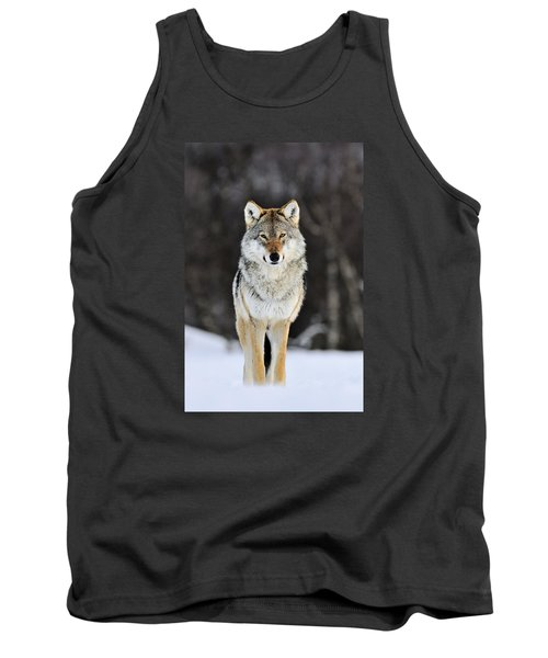 Gray Wolf In The Snow Tank Top