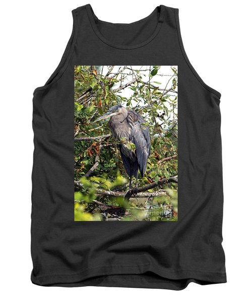 Great Blue Heron In A Tree Tank Top