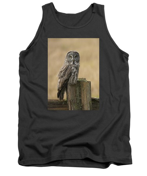 Great Gray Owl Tank Top by Doug Herr