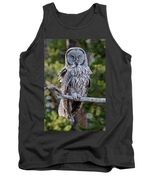 Great Grey Owl Yellowstone Tank Top