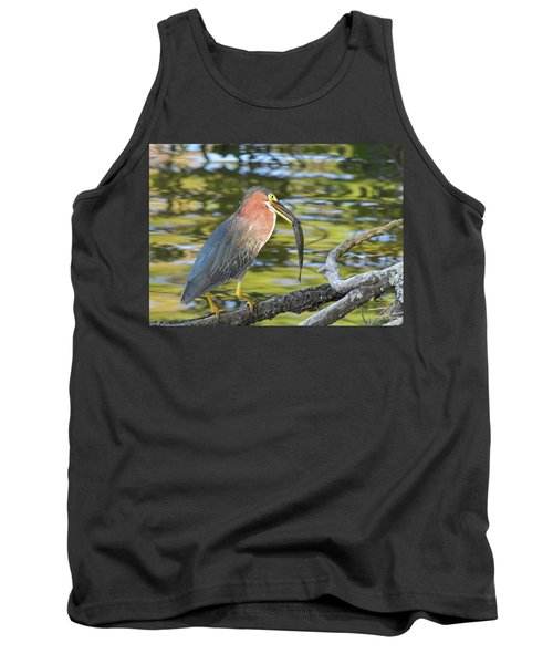 Green Heron With Fish Tank Top