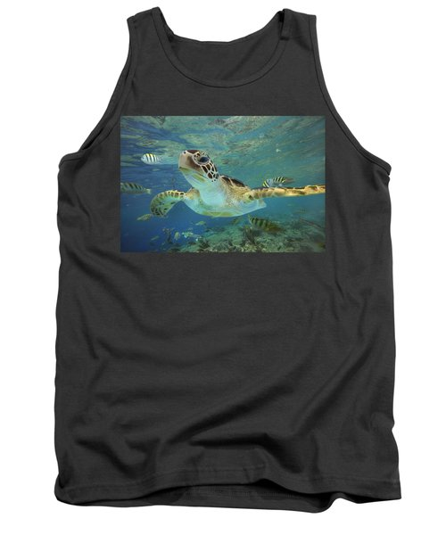Green Sea Turtle Chelonia Mydas Tank Top