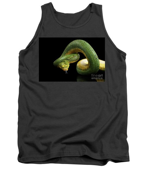 Green Tree Python. Morelia Viridis. Isolated Black Background Tank Top