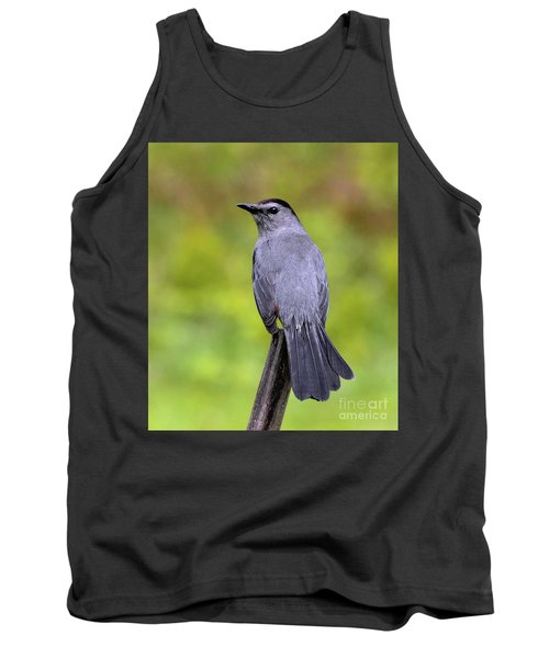 Tank Top featuring the photograph Grey Catbird by Debbie Stahre