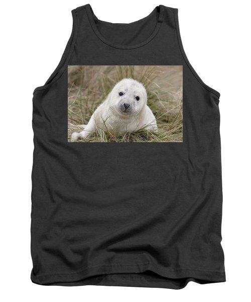 Grey Seal Pup Tank Top