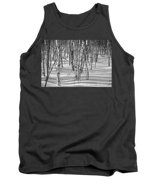 Group Of White Birches Tank Top