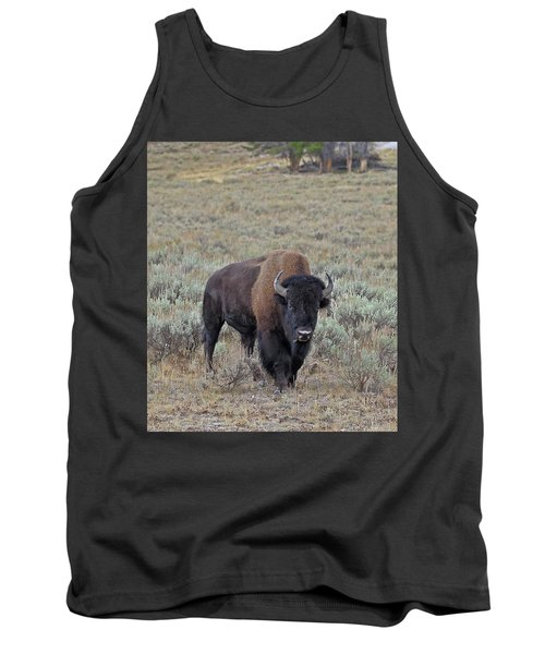 Handsome Bison Bull Tank Top