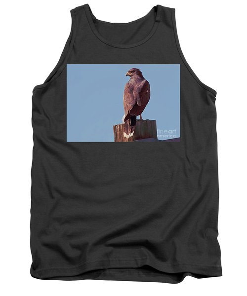 Tank Top featuring the photograph Harris Hawk by Anne Rodkin