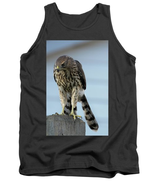 Hawk Fence Tank Top