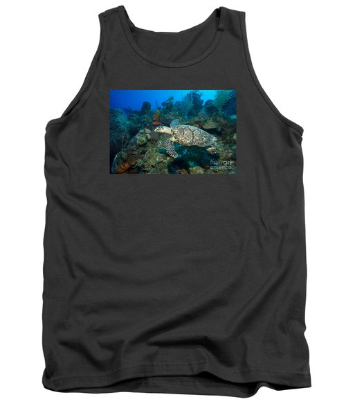 Tank Top featuring the photograph Hawksbill Haunt by Aaron Whittemore