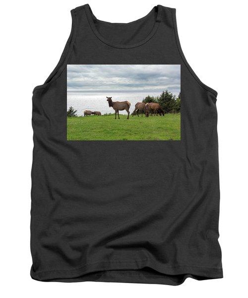 Herd Of Elk At Ecola State Park Tank Top