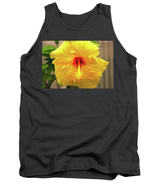 Hibiscus Flower After The Rain Tank Top