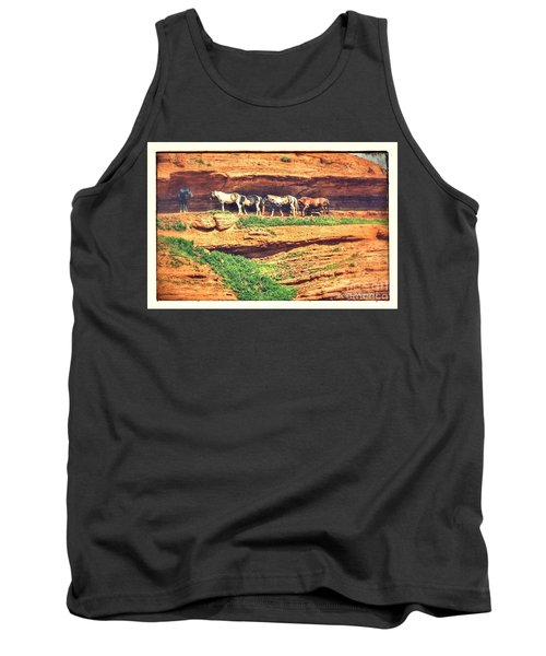 Horses Basking In The Sun Tank Top