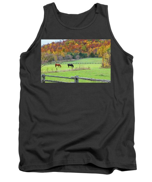 Horses Contentedly Grazing In Fall Pasture Tank Top