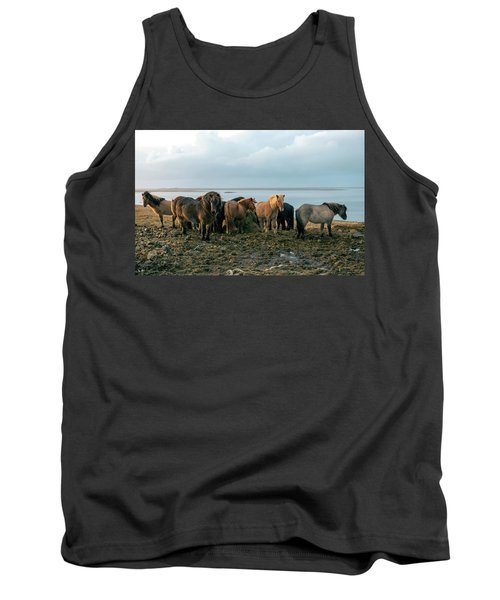 Horses In Iceland Tank Top