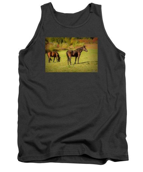 Horses In Mabou Tank Top by Ken Morris