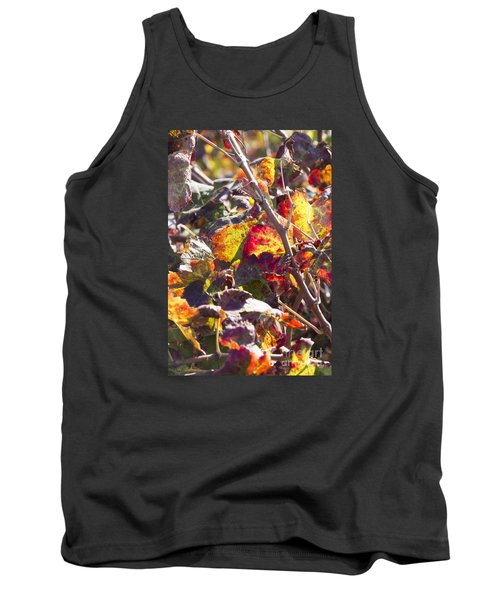 Hot Autumn Colors In The Vineyard 02 Tank Top by Arik Baltinester