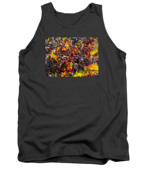 Hot Autumn Colors In The Vineyard 03 Tank Top by Arik Baltinester