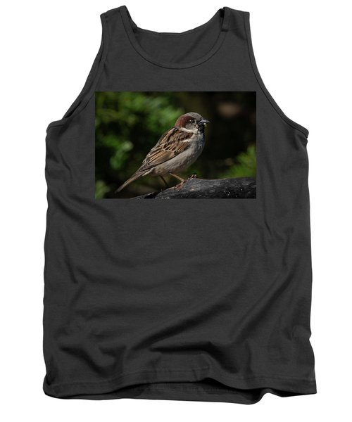 House Sparrow 2 Tank Top by Kenneth Cole