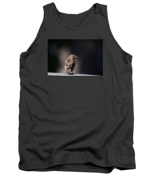 House Sparrow Tank Top by Kathy Eickenberg