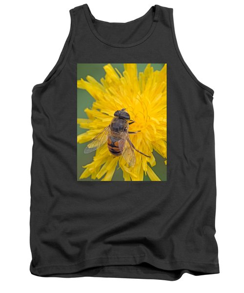 Hover Fly On Sow Thistle Tank Top