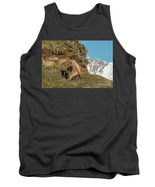 Ibex On The Mountains Tank Top
