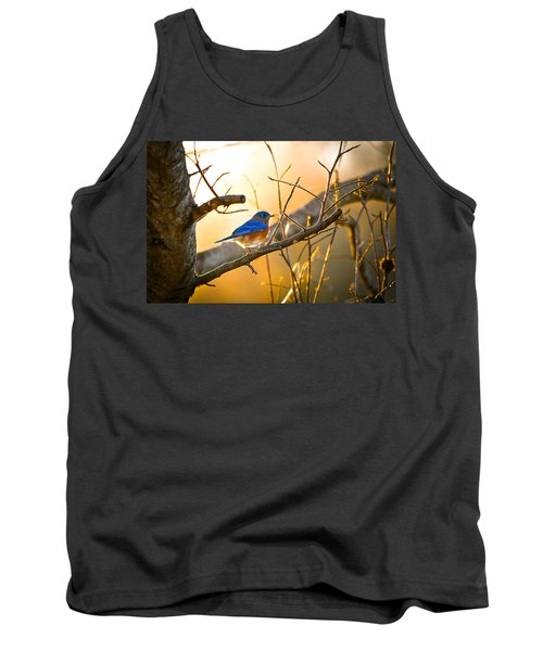 In The Light Tank Top by Shelby  Young