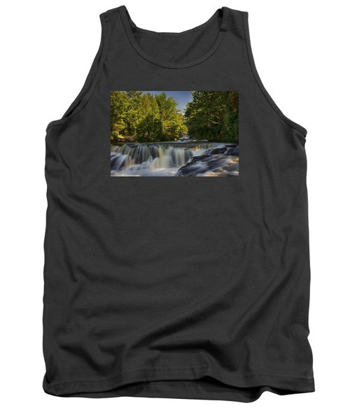 In The Middle Of The Middle Branch Tank Top by Dan Hefle