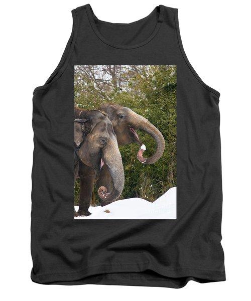 Indian Elephants Eating Snow Tank Top